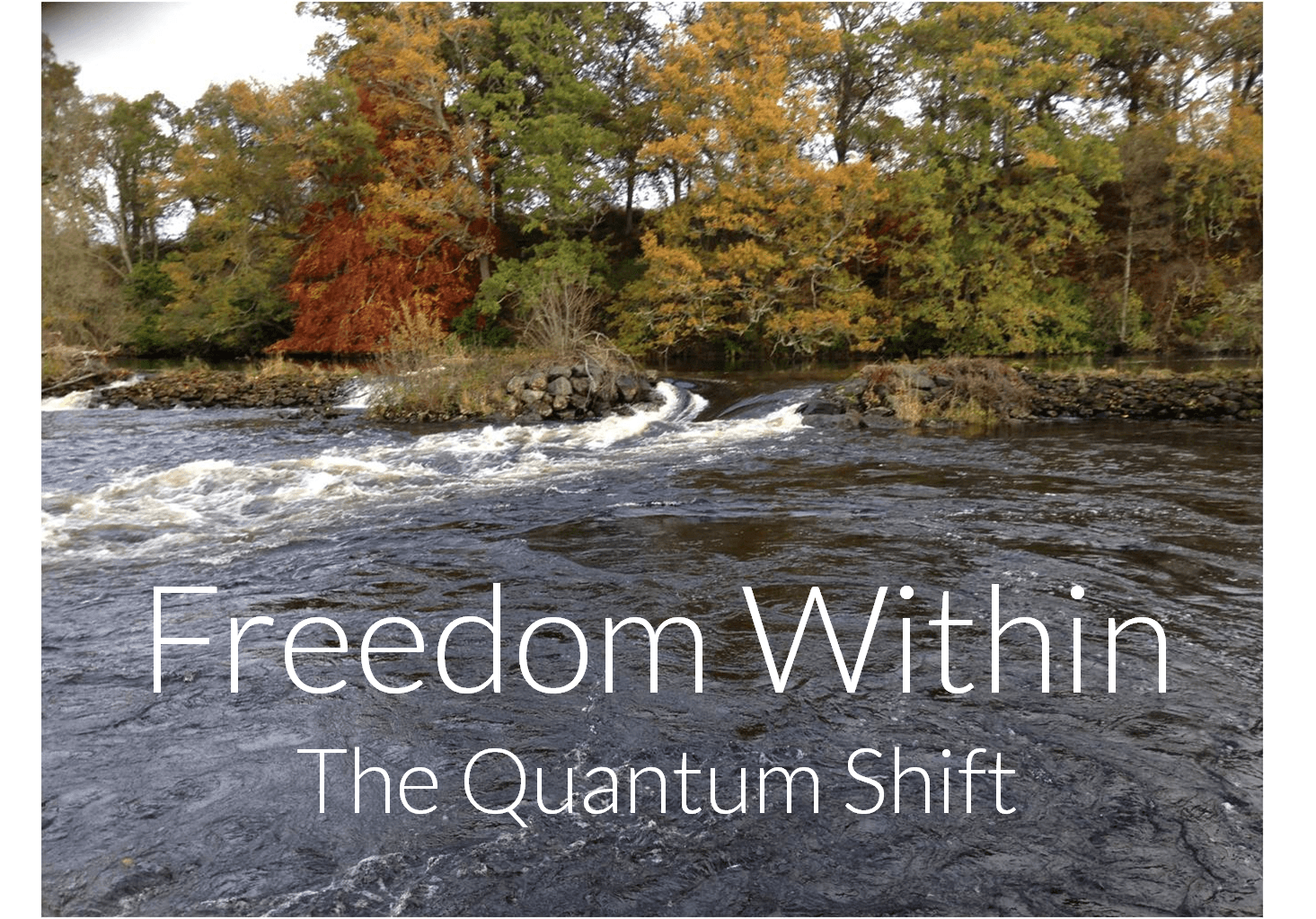 AboutFreedomWithin2